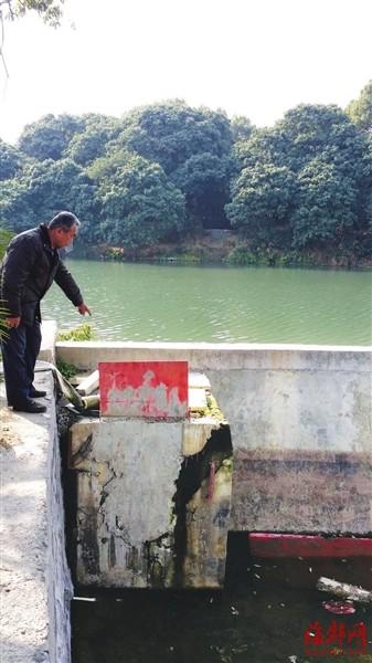 """""""泗华引水工程不仅有灌溉功能,村里两条河道的活水也主要靠该工程"""